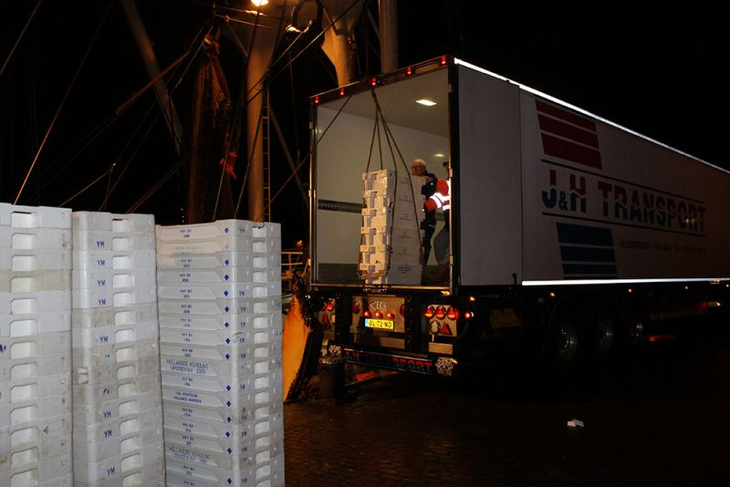 J&H Transport Velserbroek is de absolute specialist in vistransport
